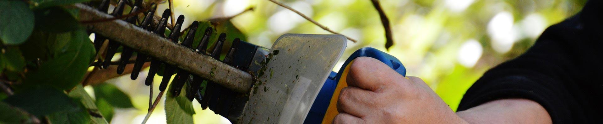 Antraygue st phane vous conseille pour l 39 entretien for Conseil entretien jardin